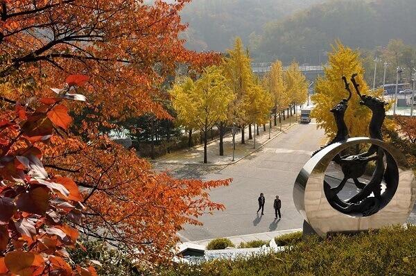 Biểu tượng của trường Kookmin