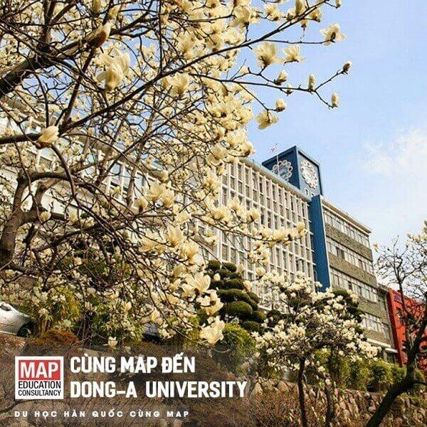 Cùng MAP đến Dong A University
