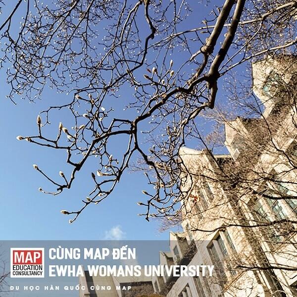 Cùng MAP đi du học tại Ewha Womans University