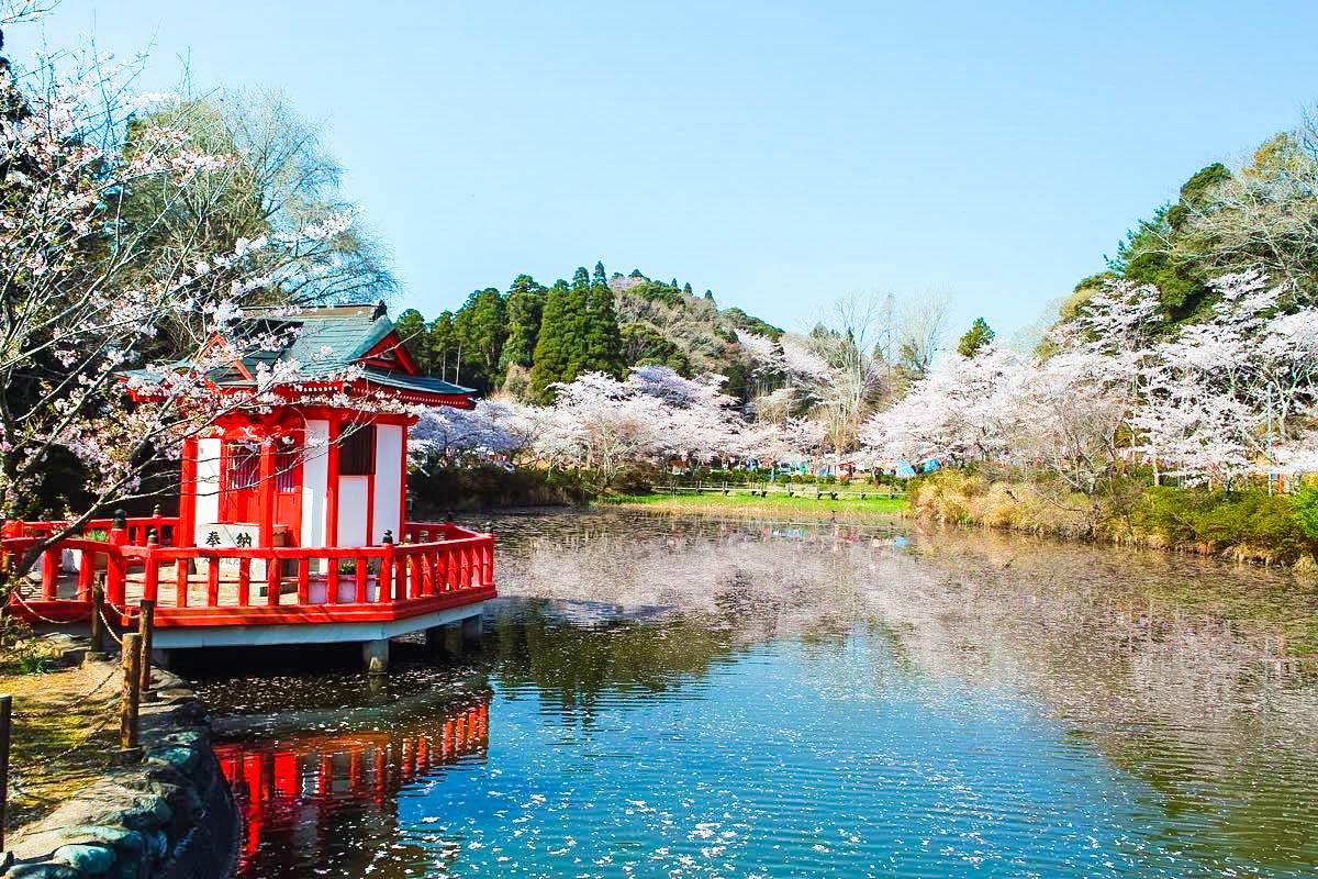 Du học Nhật Bản cùng MAP - Du học Nhật Bản tự túc