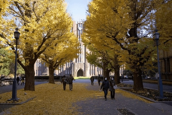 Cơ sở Hongo - Giảng đường của hầu hết các ngành đào tạo tại trường đại học Tokyo