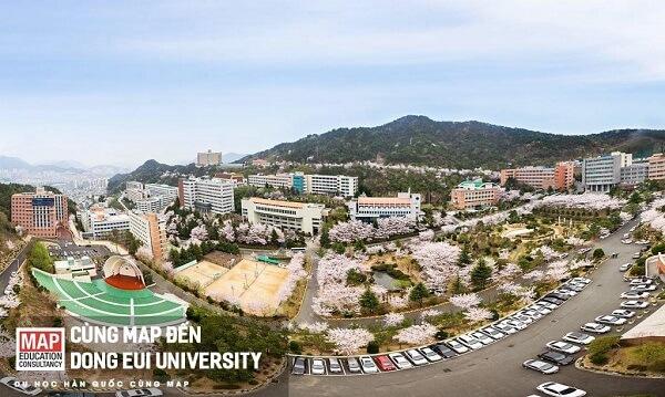 Khuôn viên trường Đại học Dong Eui Hàn Quốc