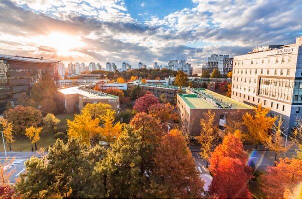 Khuôn viên trường Sungkyunkwan lãng mạn vào mùa thu