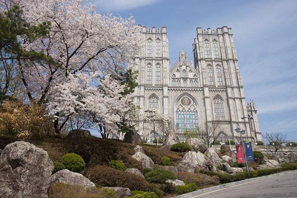 Sinh viên quốc tế có thể lựa chọn học ở Seoul campus hoặc Global campus