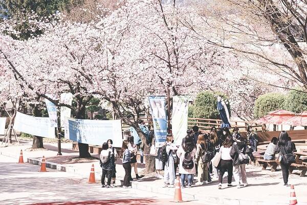 Sinh viên trong ngày nhập học tại trường Soonchunhyang Hàn Quốc