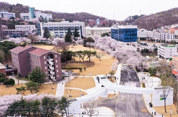 Toàn cảnh khuôn viên trường đại học SCH - sắc tím hồng lãng mạn