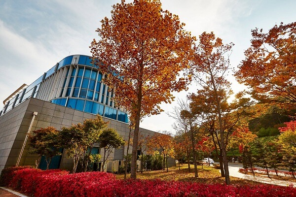 Khuôn viên trường rực rỡ sắc màu vào mùa thu