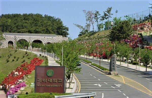 Con đường hoa dẫn vào trường Kaya