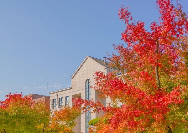 Trường Namseoul rực rỡ vào mùa thu