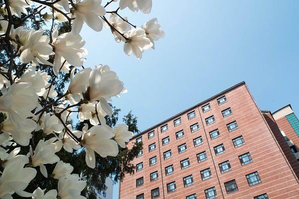 Học xá Đại học Nữ sinh Seoul vào mùa xuân