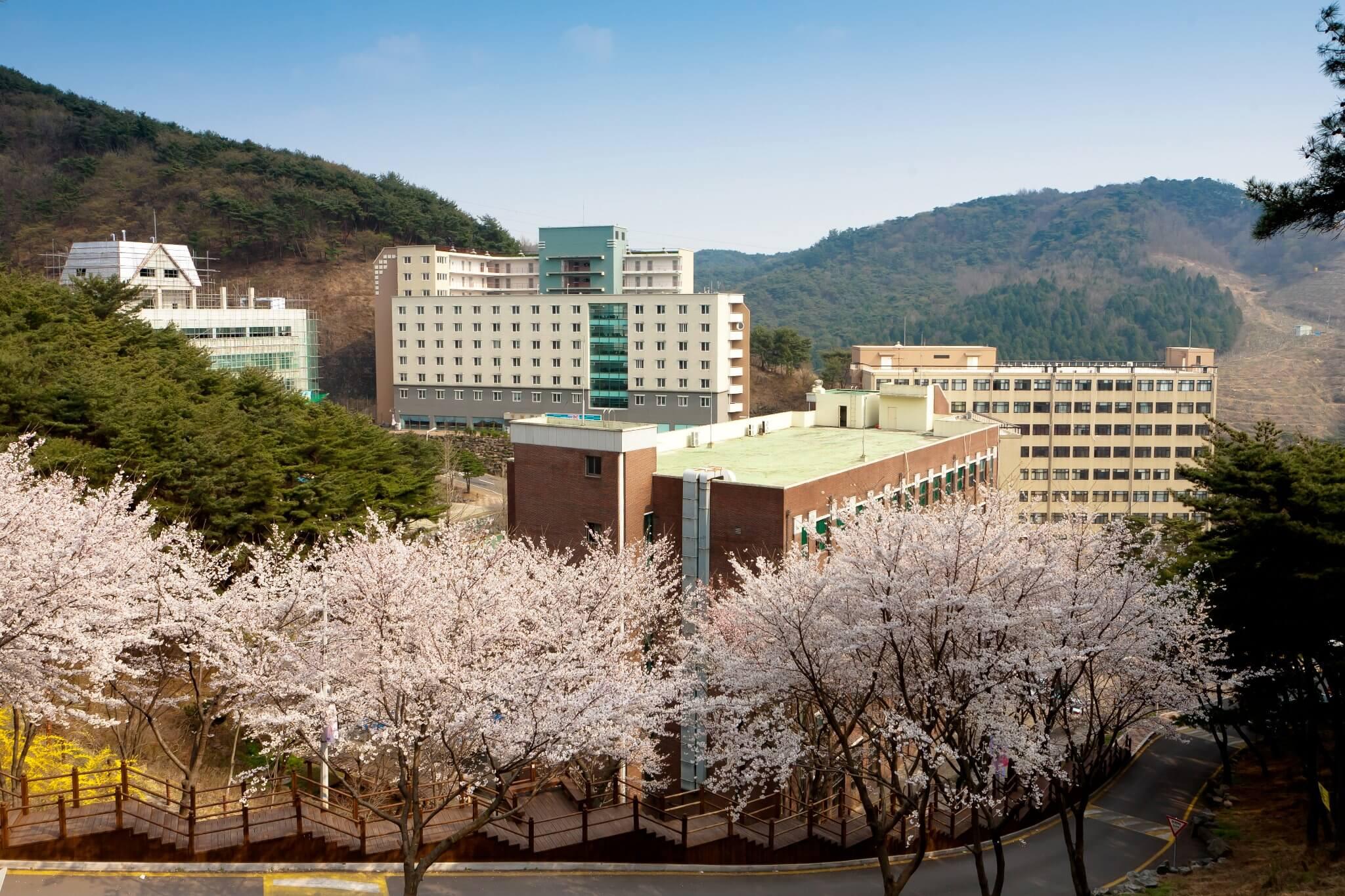 Cùng Du học MAP khám phá trường Đại Học Quốc Tế Hàn Quốc