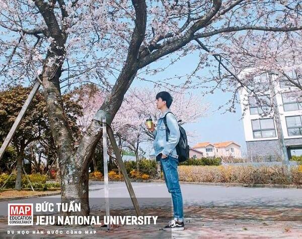 Đức Tuấn - Sinh viên MAP ưu tú tại Jeju National University