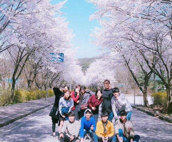 Góc sống ảo đầy thơ mộng tại Học viện Công nghệ Yeoju Hàn Quốc