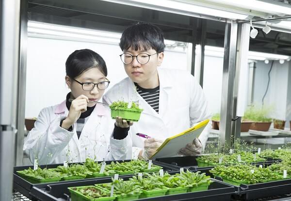 Nghiên cứu Sinh học - thế mạnh của ĐH Jeju