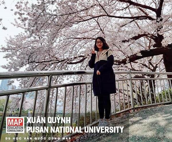 Xuân Quỳnh và mùa xuân đầu tiên tại Hàn Quốc