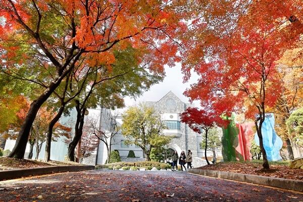 Khuôn viên đầy sắc màu tại Đại học Yonsei vào mùa thu