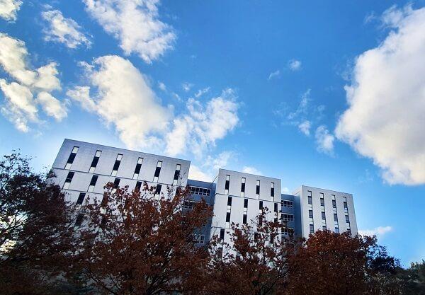 Khung cảnh mùa thu tại Đại học Khoa Học và Công Nghệ Quốc gia Seoul