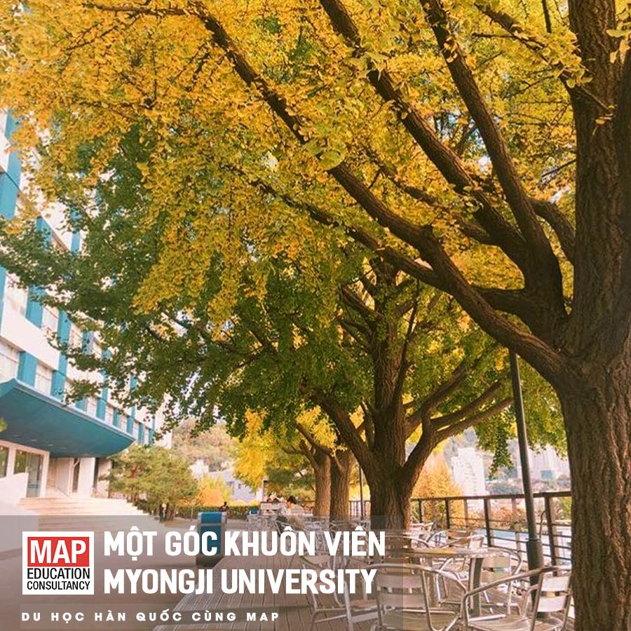 Du Học Hàn Quốc 2020: Đại Học Myongji