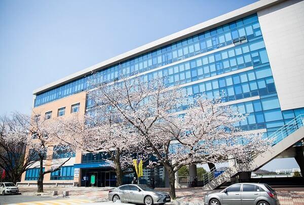Pai Chai University đẹp dịu dàng vào mùa xuân