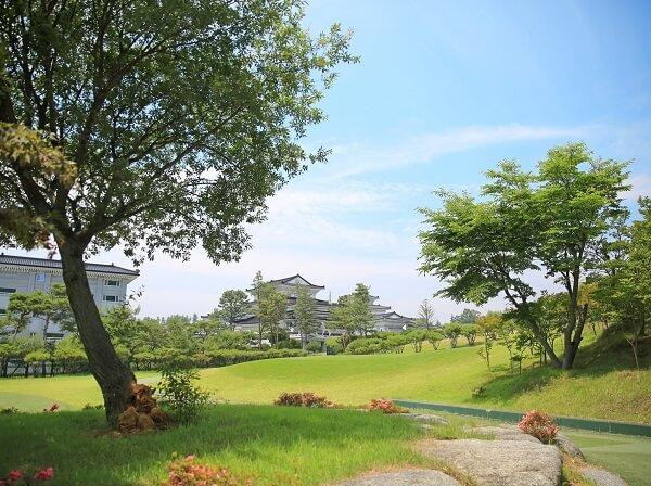 Khuôn viên Jungwon University xanh mát vào mùa hạ