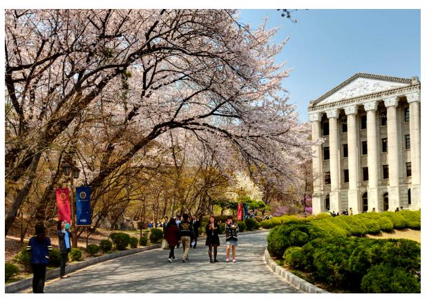Môi trường du học tại Hàn Quốc