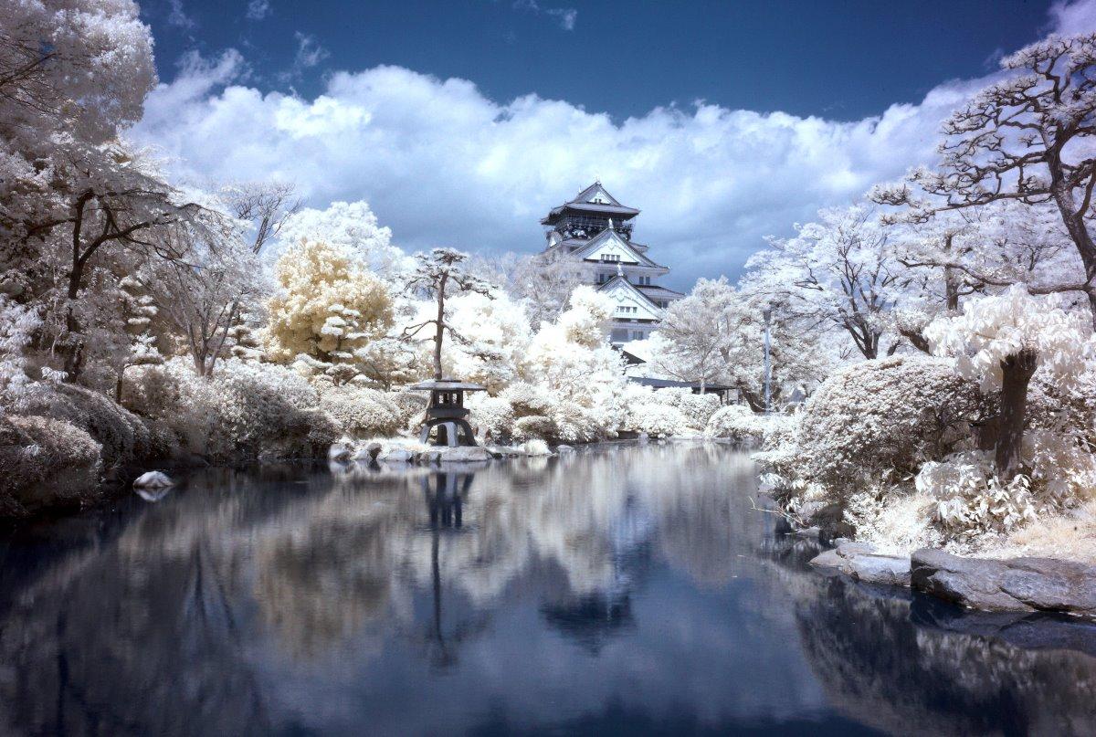 Du học Nhật Bản cùng MAP - Bảo hiểm du học Nhật Bản