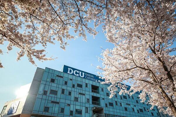 Khuôn viên Đại học Công giáo Daegu vào mùa xuân