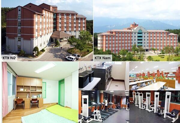 Tòa ký túc xá nam - nữ và cơ sở vật chất hiện đại tại đại học kyungdong