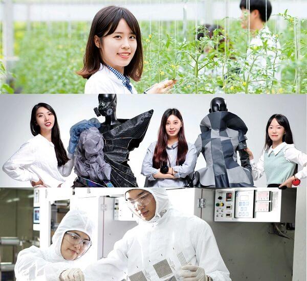 Các ngành học nổi bật tại Sunchon