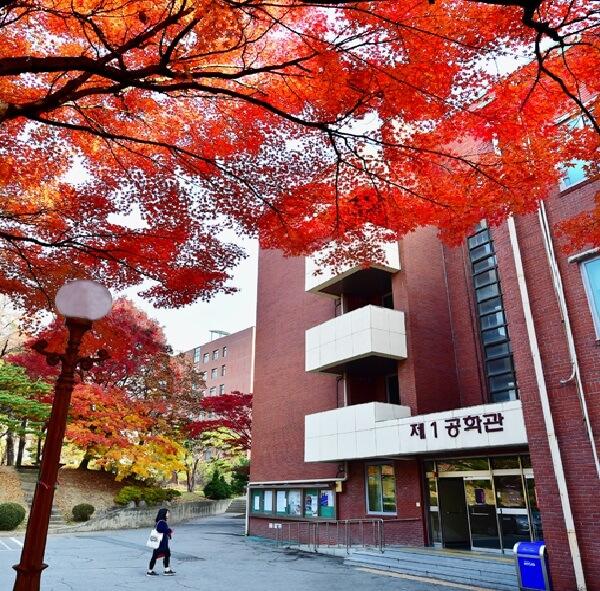 Khuôn viên rực rỡ sắc màu vào mùa thu