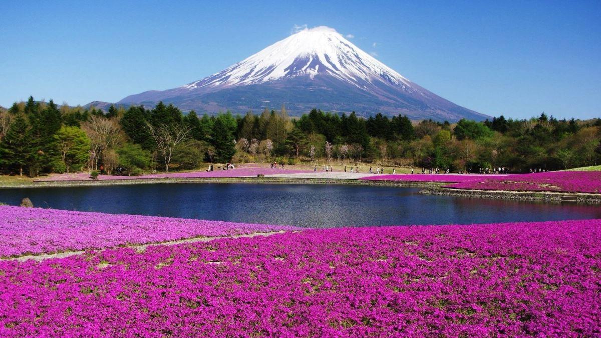 Du học Nhật Bản cùng MAP - Du học Nhật Bản ngành nông nghiệp