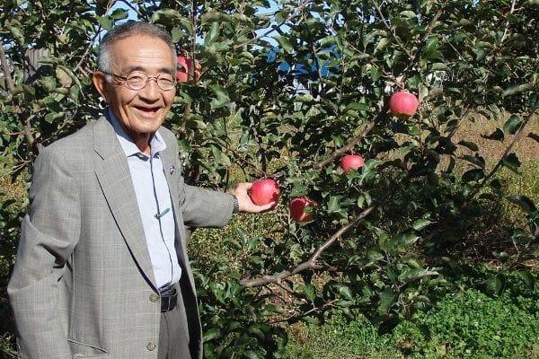 Ông Kimura và vườn táo diệu kỳ - Tấm gương tiêu biểu dành cho sinh viên du học ngành nông nghiệp tại Nhật