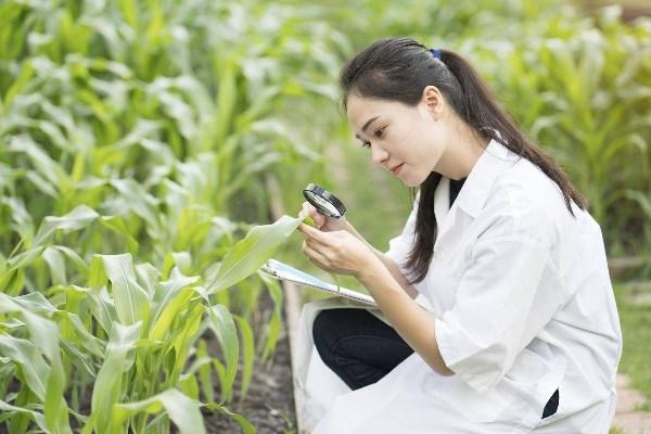Sinh viên du học ngành môi trườngtại Nhật Bản sẽ được học những chương trình hàng đầu