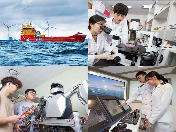 Các ngành học nổi bật tại Đại học Hàng hải và Đại dương Hàn Quốc