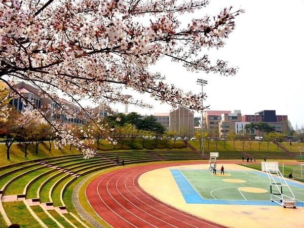 Sân thể thao tại Đại học Mokwon