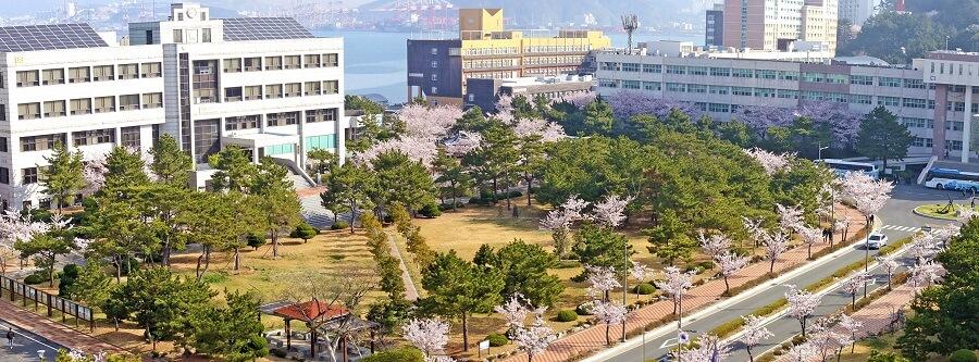 Toàn cảnh trường Korea Maritime and Ocean University