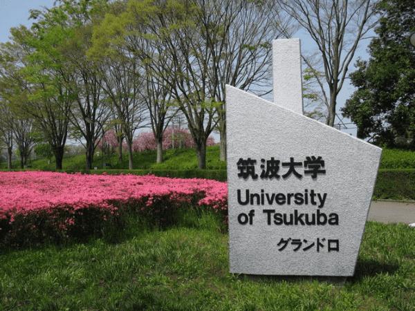 Đại học Tsukuba - Top 10 trường đại học danh tiếng tại Nhật Bản