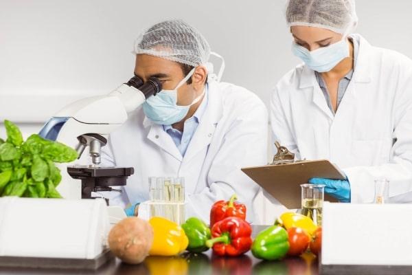 Sinh viên cần đáp ứng những phẩm chất cần thiết liên quan đến ngành công nghệ thực phẩm