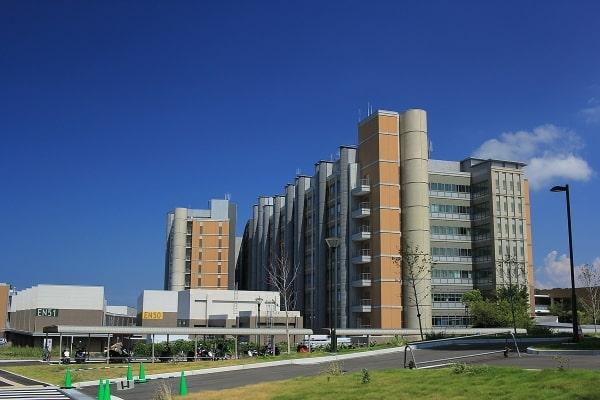 Cơ sở chính của Kyushu University chính là Ito