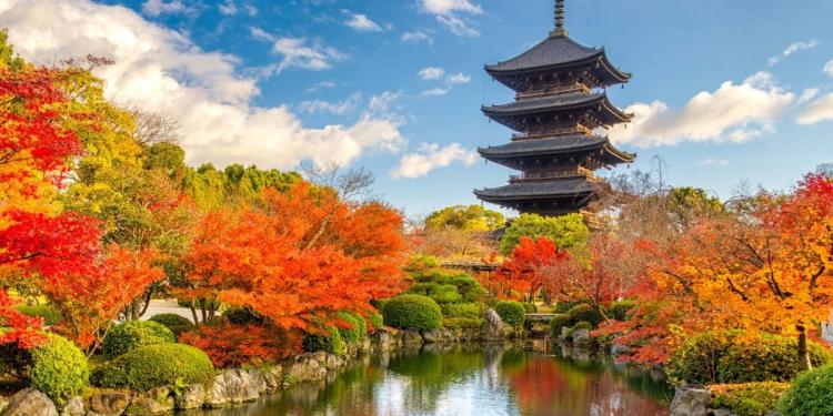 Du học Nhật Bản cùng MAP - Học bổng chính phủ Nhật Bản MEXT