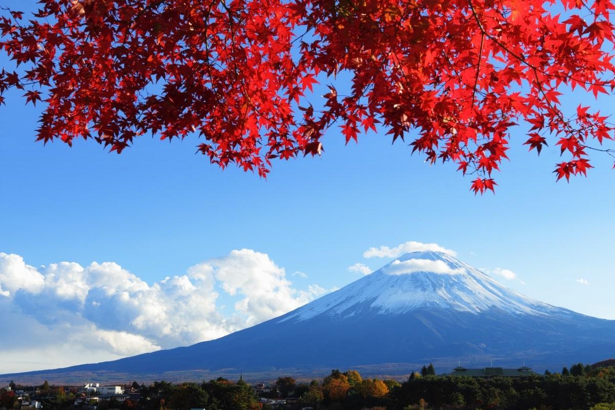 Tiêu Chuẩn Sức Khỏe Đi Du Học Nhật Bản: 5 Điều Sinh Viên Cần Lưu Ý