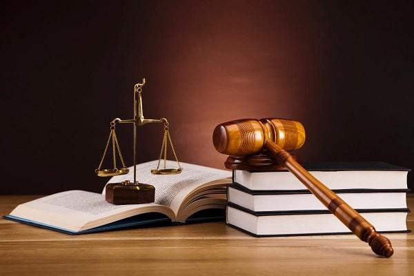 Học chương trình cử nhân Luật tại Amity