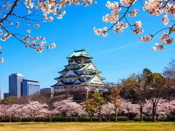 Joho là tập đoàn nổi tiếng tại Osaka về ngành điều dưỡng