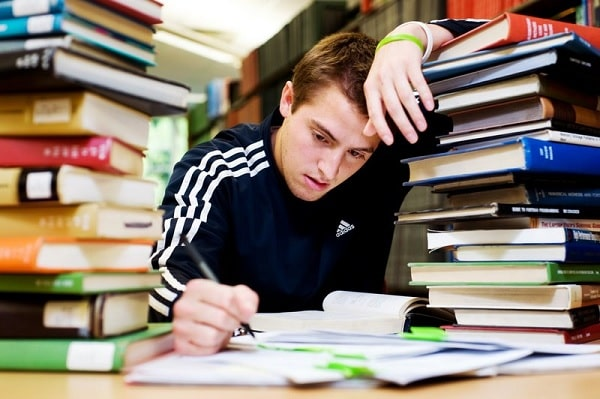 Chương trình học không có nhiều kì nghỉ nên thời gian học và áp lực học sẽ cao hơn
