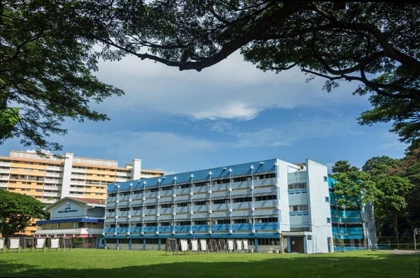 Tham gia các khóa học tiếng Anh tại trường Cao đẳng quốc tế Shelton