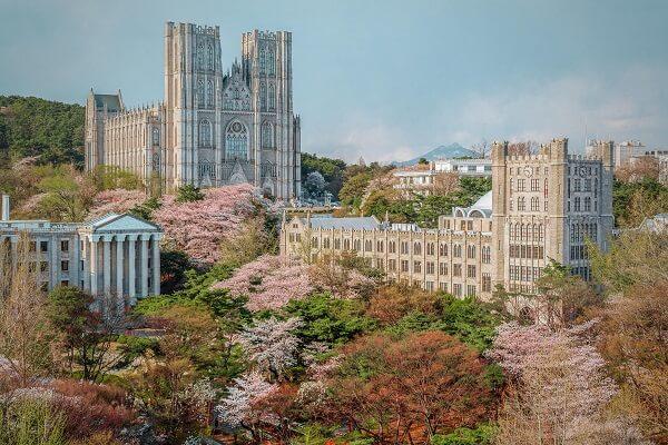 Cùng MAP đi du học ngành Kinh doanh Quốc tế tại Đại học Kyung Hee Hàn Quốc