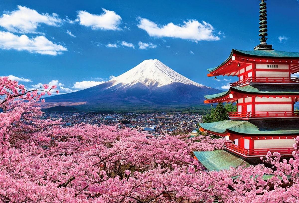 Nên Đi Du Học Hay Xuất Khẩu Nhật Bản?