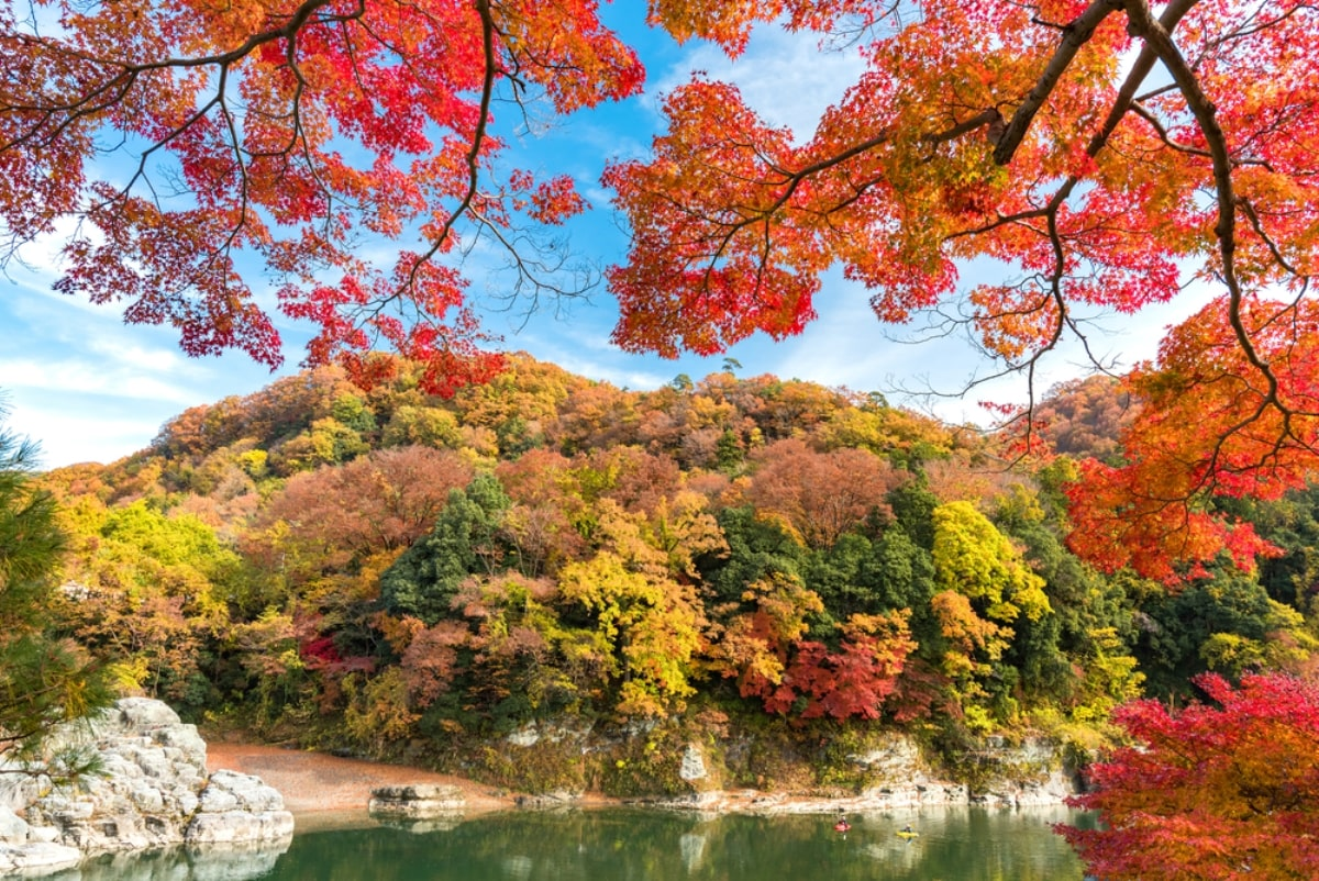Du Học Nhật Bản Tại Saitama – Thành Phố Huyết Mạch Của Nhật Bản