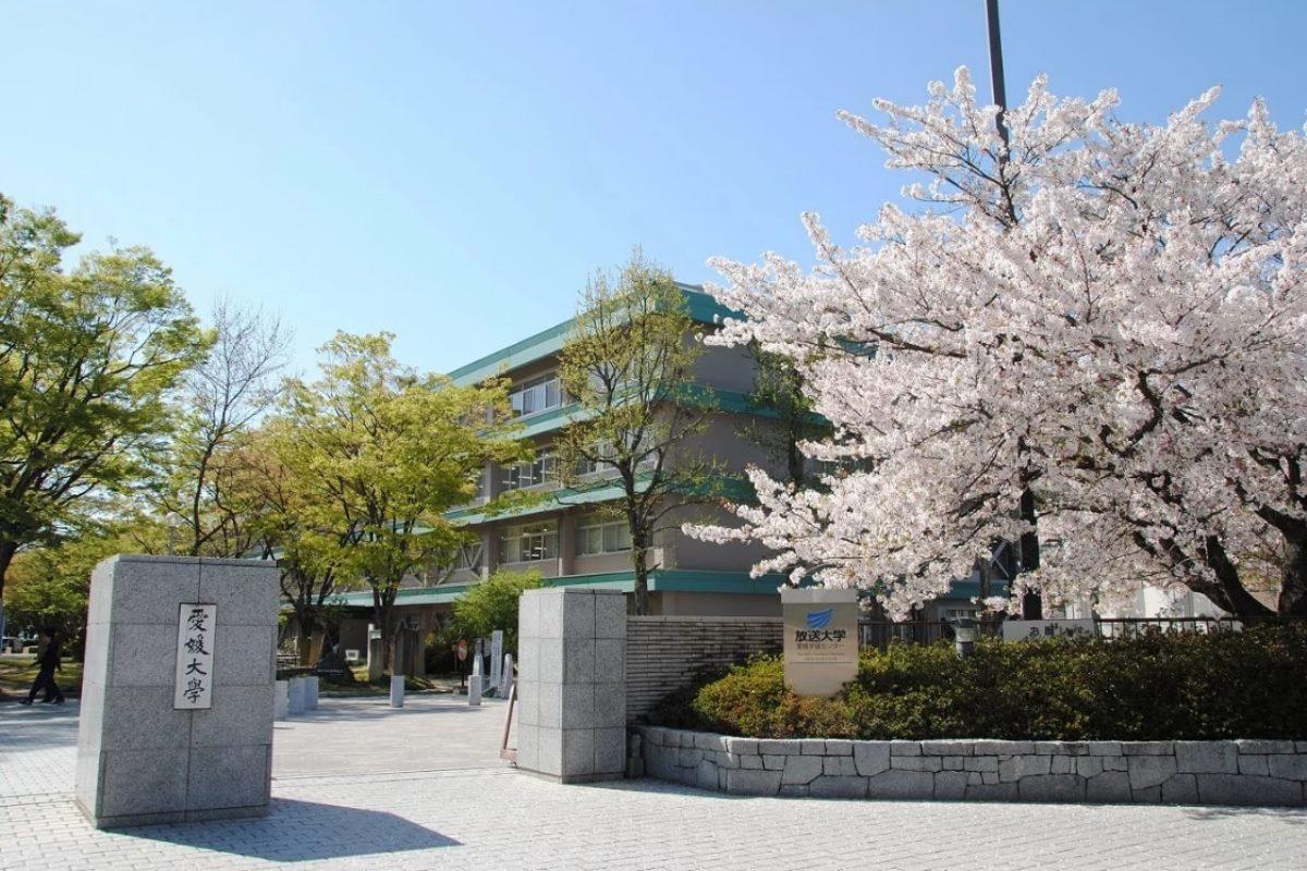Trường Đại Học Ehime Nhật Bản – Trường Quốc Lập Hàng Đầu Tỉnh Ehime