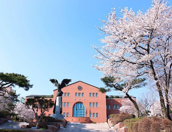 Khuôn viên trường Văn hoá Keimyung đẹp nên thơ vào mùa xuân